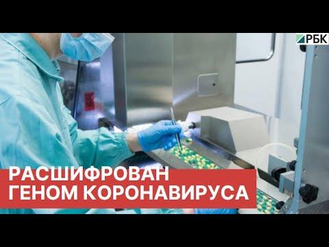 Геном коронавируса COVID-19 расшифрован российскими учеными.