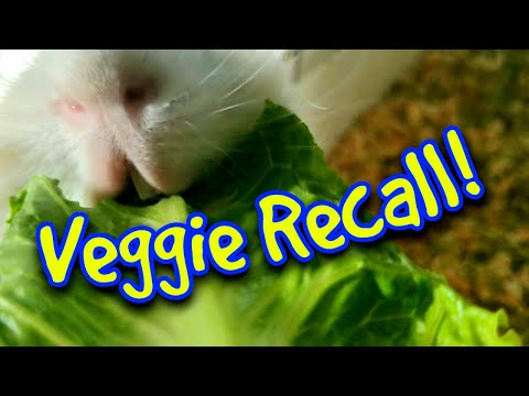 Veggie Recall! What You Need To Know