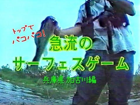 急流のサーフェスゲーム 兵庫県 加古川編  Bass fishing in Kakogawa of Japan