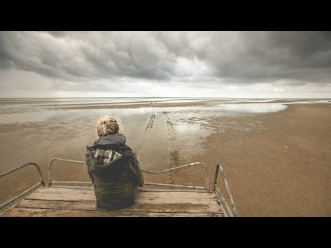 Wadden Sea - A world of discovery on the sea bed
