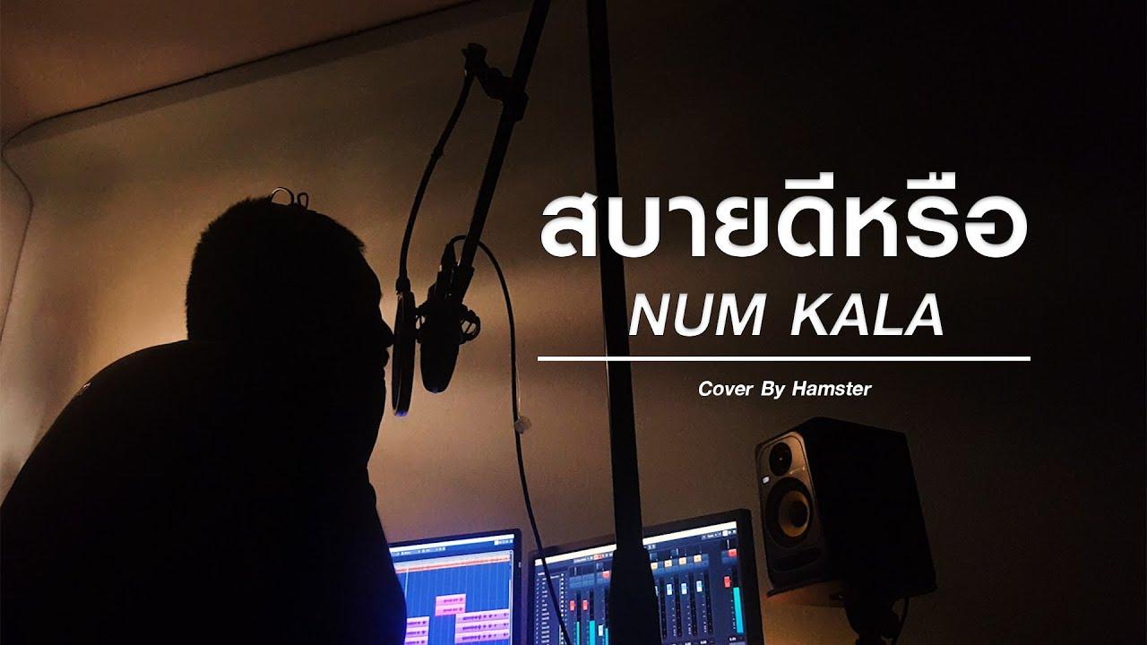 สบายดีหรือ  - NUM KALA [Cover By Hamster]