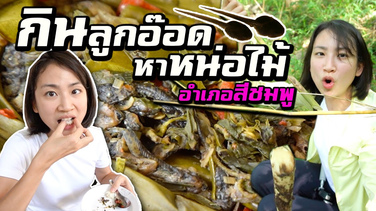ขอนแก่น- อำเภอสีชมพู? Ep.1 | Unseen Khon Kaen
