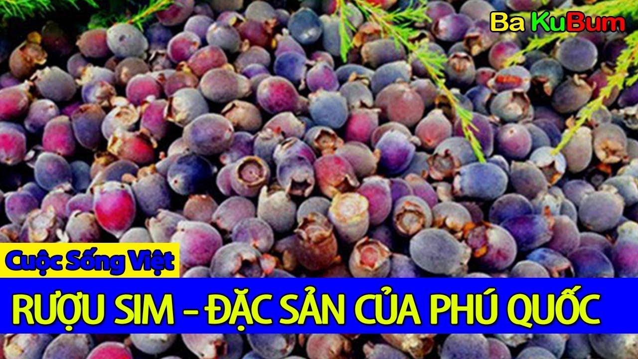 Rượu sim – Đặc Sản Phú Quốc | Viet Nam Life and Travel | BKB CHANNEL