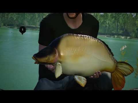 Euro Fishing | A Lot Of Catfish And Carps |