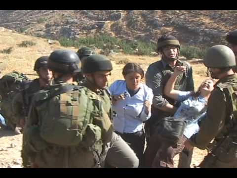 Israeli Border Policeman twisting the arm of an Israeli peace activist