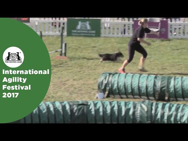 Small Grade 7 Jumping - Part 5 | International Agility Festival 2017