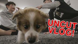 UNCUT Vlog mit HeyMoritz und Flash 🐶 (vorsicht random)   Jonah Pueschel