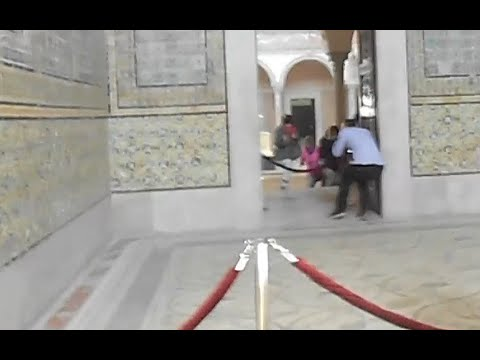 New footage shows terrified tourists in Tunisia terrorist at