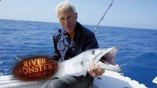 Catching Giant Barracudas - River Monsters