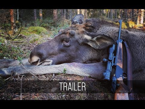 NH: TRAILER | Moose Hunting 2018