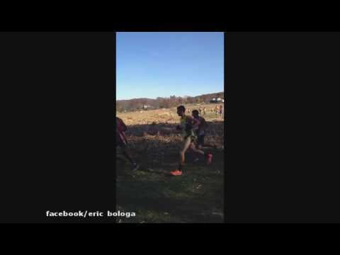 Deer Runner During Race