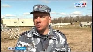 В Архангельске проходят соревнования кинологов
