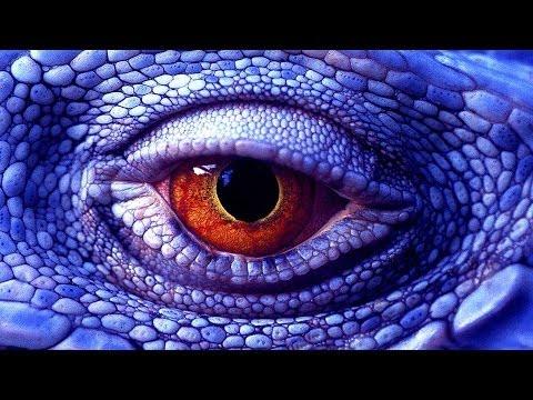 Иллюзия восприятия 4 Зрительные и иные искажения