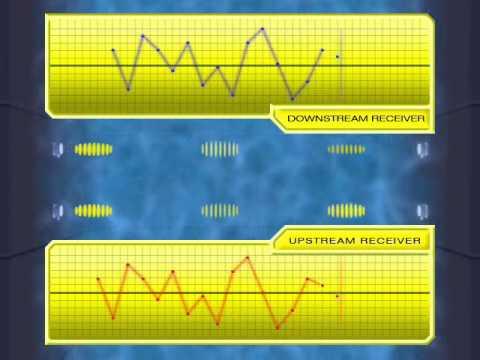 ASFM Measurement Principle