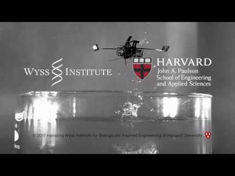 Aerial-Aquatic Microrobot