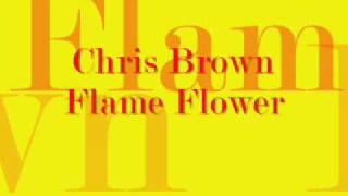 Download Chris Brown Flame Thrower w/Lyrics [NEW 2009] MP3 song and Music Video