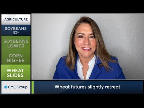 January 13 Grains Commentary: Virginia McGathey