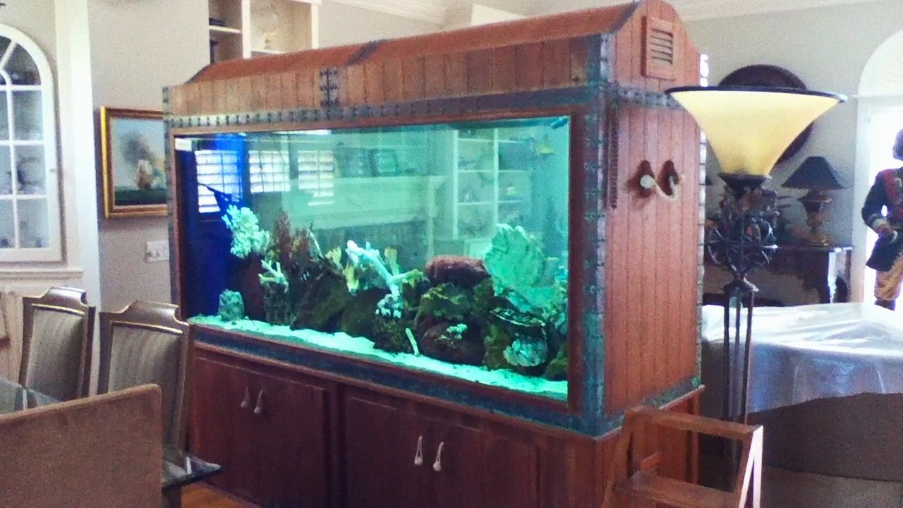 500 gallon saltwater aquarium youtube for Used fish tanks for sale on craigslist