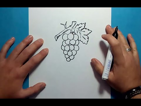 Como Dibujar Un Racimo De Uvas Paso A Paso 2 How To Draw A Bunch Of Grapes 2