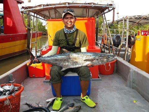 Tuas Pulau Payar 23.7.2016 - Layan Bunyi Drag Banax SX5000 ditarik Sang Tenggiri 12 Kg