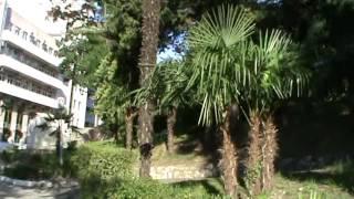видео Санаторий Аврора
