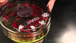 食物乾燥機 Loyola 蔬果烘乾機 hl 1080 乾果機 產品介紹
