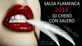 SALSA FLAMENCA 2018 ESTA ES MI RUMBA REMIX DJ CHEKO CON SALERO