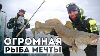 Как ловить ТОЛЬКО БОЛЬШУЮ рыбу?! Я больше не хочу ловить...