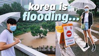 Korea is FLOODING...☔️ Non-stop Summer Rain 💦 Life in Seoul VLOG