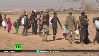 Западные СМИ по разному подходят к освещению ситуации в Мосуле и Алеппо — эксперт
