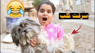 دانيه اخذت كلب  الجيران #تحشيش    طه البغدادي