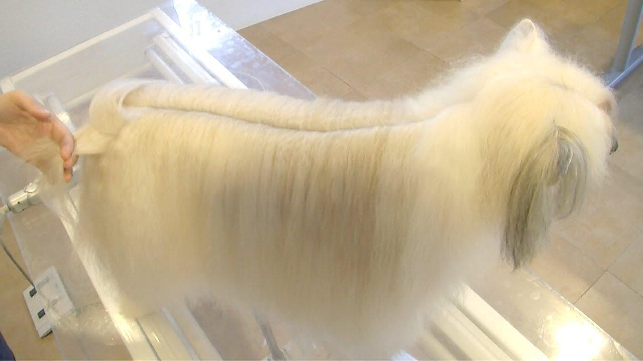 Corte de pelo con final feliz - 3 5