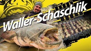 Waller - Schaschlik |  Welsangeln Am Fluss Mit Der Steinmontage | U-Pose, Köderfisch, Angelplatz