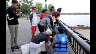 Can students return a billion oysters to a New York harbor?