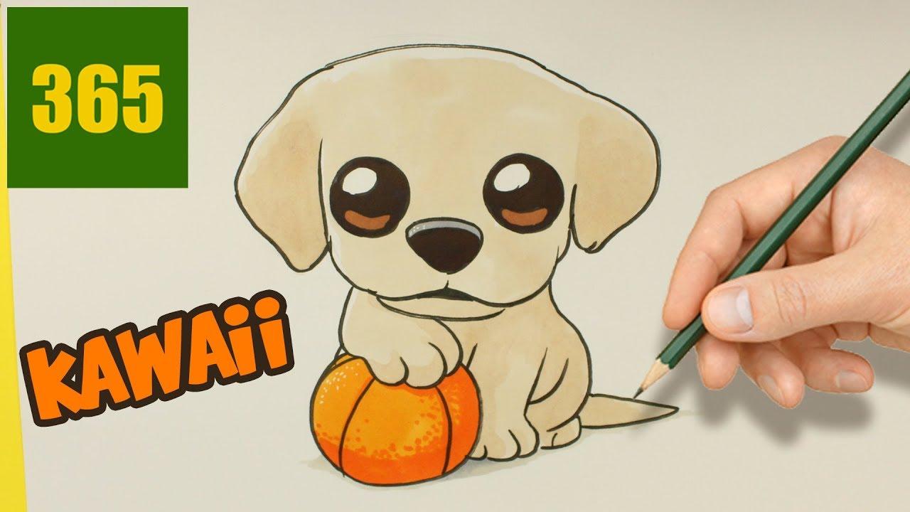 Chiot Dessin comment dessiner un chien labrador kawaii 🐶 comment dessiner un