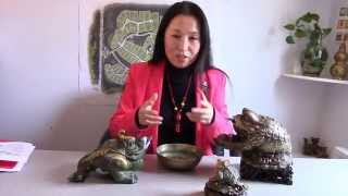 Feng Shui Money Frog (English Version)