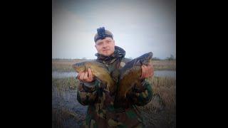 Рыбалка на Линя и Карася весной 2020г Поводки в клочья от поклевки рыбалка линь карась поплавок