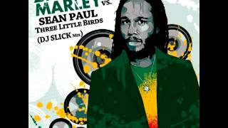 Ziggy Marley feat. Sean Paul - Three Little Birds (DJ SLICK Extended Mix)