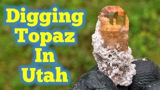Topaz Crystal Treasures Popping Out The Ground in Utah