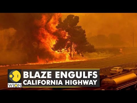 Fresh wildfire breaks out in Los Angeles county in California | Latest News | World News | WION