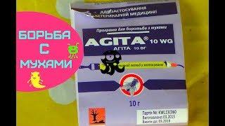 видео Средство Агита от мух: инструкция по применению, эффективность
