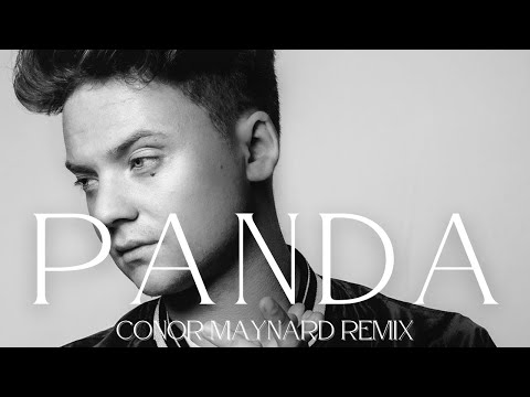 Panda - Desiigner Cover by Conor Maynard Deleted