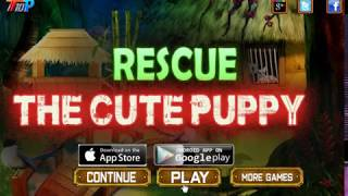 Rescue the cute puppy walkthrough