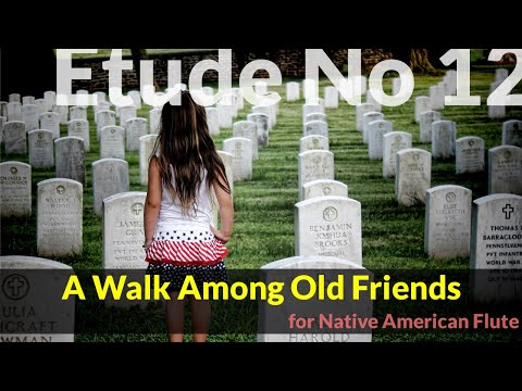 Native American Flute Etude No. 12 - A Walk Among Old Friends