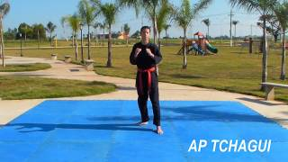 Video Movimentos básicos de faixa branca - Hapkido Sungjakwan - 2013 download MP3, 3GP, MP4, WEBM, AVI, FLV September 2018