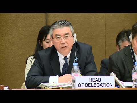 Japanese gov't denies issue of comfort women at UN session