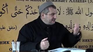 Борцы ММА и воины имама Шамиля | Магди-хаджи Абидов