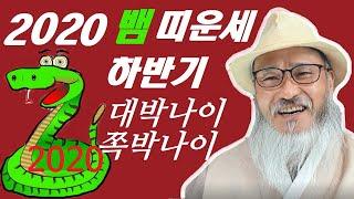 2020년 하반기(6~12월) 뱀띠 나이별운세(대박나이,쪽박나이는 몇년생?)