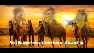 Les chevaux au Son des Accords Toltèques - Documentaire du stage
