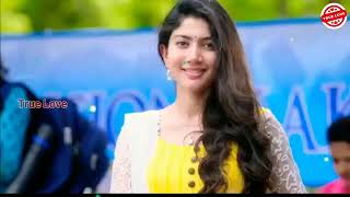 #new love music, hindi ringtone 2019,latest ringtone 2019, Ringtones for mobile mp3,new love music h